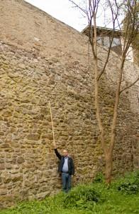 Vor dem Keferberg, hinter der Mauer